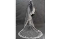Veils and Gloves
